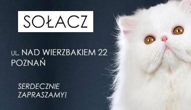 Cztery Łapy - Poznań Sołacz ul. Nad Wierzbakiem 22